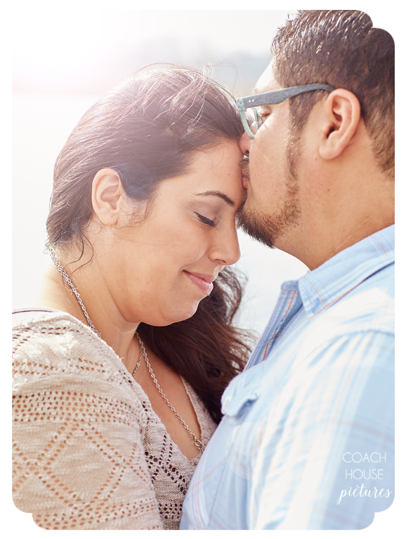 Luis + Amanda Wisconsin Engagement Session